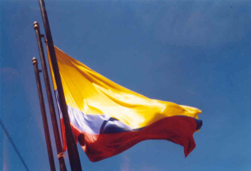 Colombian Flag - Peace